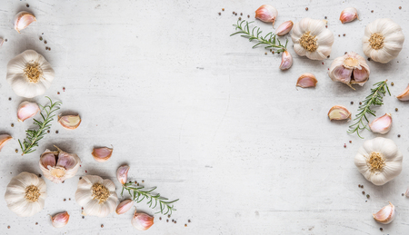 Garlic. Garlic bulbs. Fresh garlic with rosemary and pepper on white concrete board.