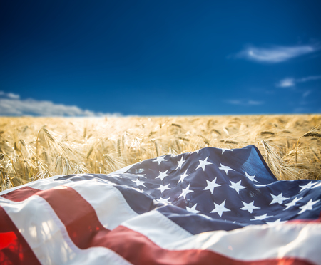 American flag lies on the golden wheat field.
