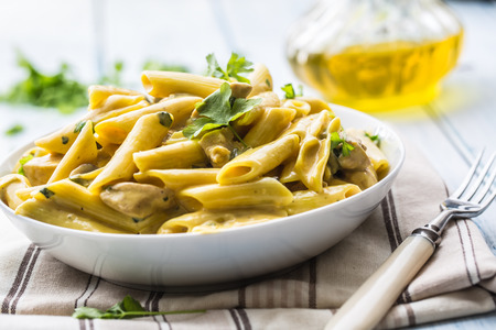 Pasta pene with chicken pieces mushrooms parmesan cheese sauce and herb decoration. Pene con pollo - Italian or medierranean cuisine. Foto de archivo - 111918861