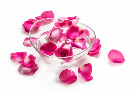 Pink roses and petals in bowl with pure water over white.. Spa and wellness concept.