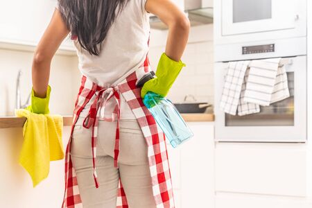 Back of a woman with an apron and rubber gloves on, holding a rag and detergent in hands, standing in the kitchen.