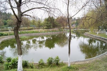 Park landscape  photo