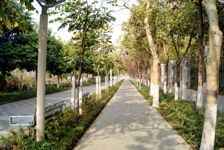 sidewalks: City road