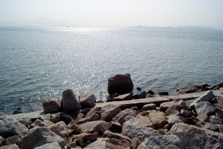Shenzhen bay park  photo