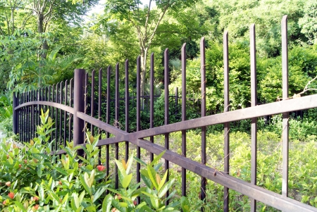 The iron railings and garden  Stock Photo