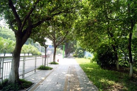 Sidewalks and green belt Stock Photo