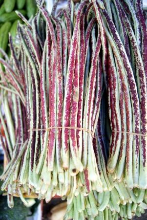 long beans: Long beans Stock Photo