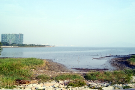 Shenzhen bay beach landscape, in shenzhen, China Stock Photo - 16217236