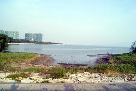 Shenzhen baie paysage, � Shenzhen, en Chine