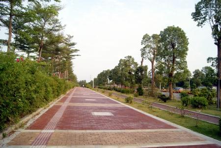 Route de la ville
