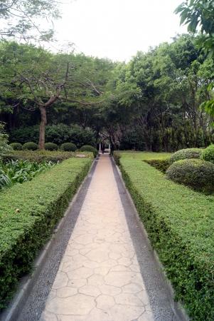 sidewalks: Garden in shenzhen, China