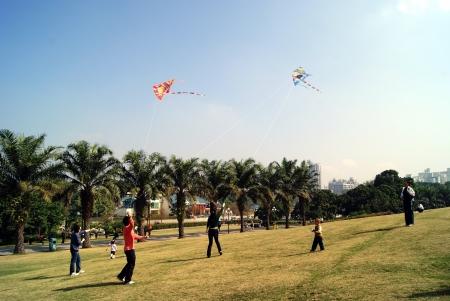 flying kites: People are flying kites