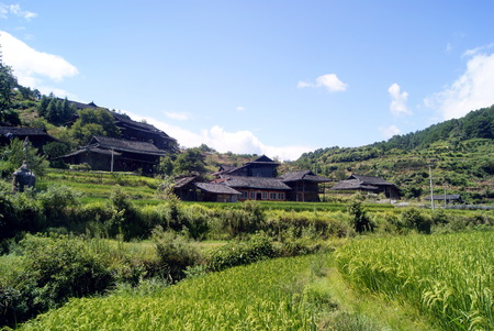 pastoral scenery: Chinese rural landscape