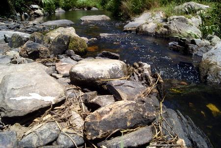 streams: Rural streams