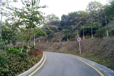 rural area: Asphalt road in rural area