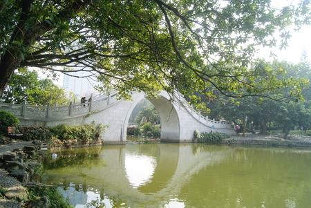 litchi: Shenzhen litchi park lake landscape