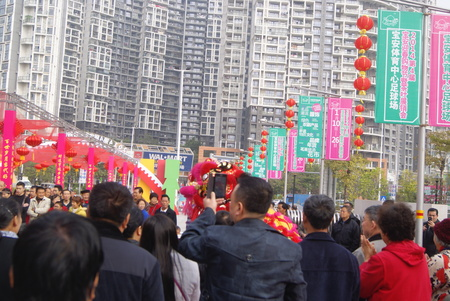 customs and celebrations: Chinese lion dance activities