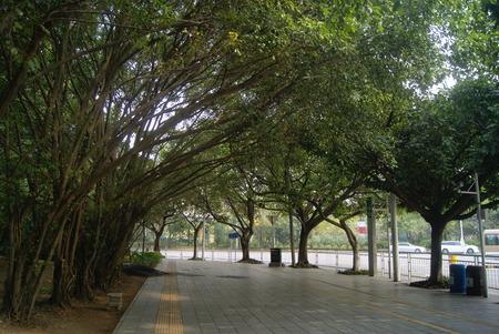 sidewalks: Green belt and sidewalks, in Chinese Stock Photo
