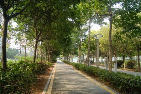 sidewalks: Green belt and sidewalks, in China Stock Photo