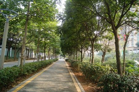 Ceinture et trottoirs Vert, en Chine Banque d'images