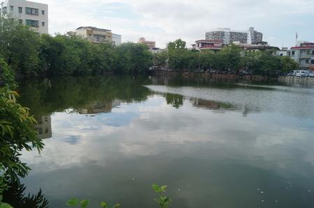 Pond landscape Banque d'images