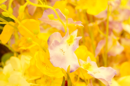 artificial flowers Imagens - 87757536