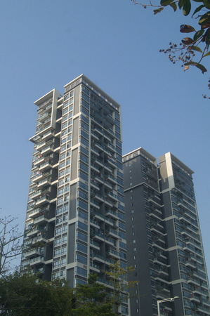 Appearance of Residential Buildings, Shenzhen, China 新聞圖片