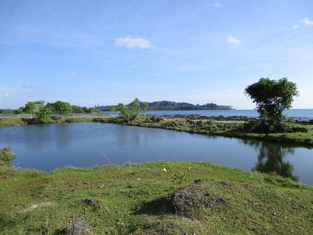greem: Lagoon