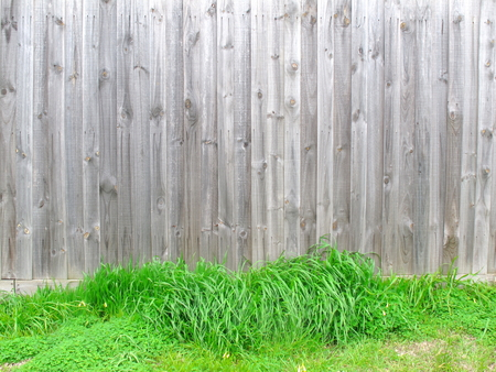 Wood fence have green grasses at bottom look like nest for egg that mean can put object on grass, Wood texture