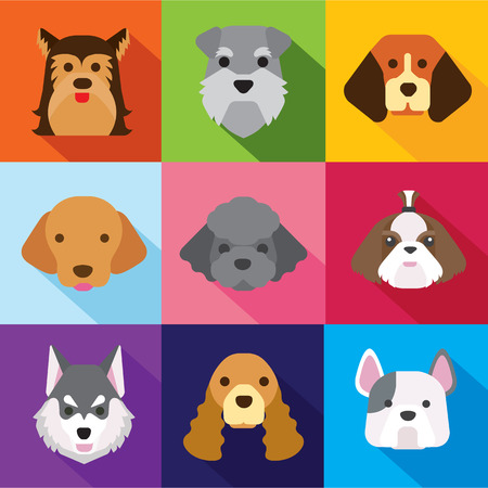 animal character: dogs flat design