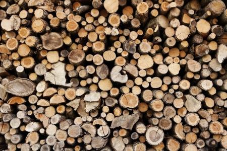 woodpile: Firewood stack Stock Photo