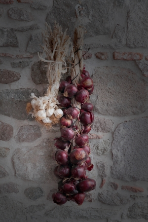 An onion and garlic braid hanged on stone wa photo