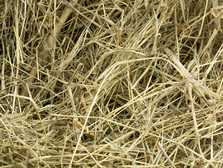 backgroung: Haystack Backgroung Stock Photo