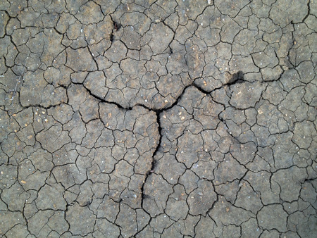 Crack soil on dry season