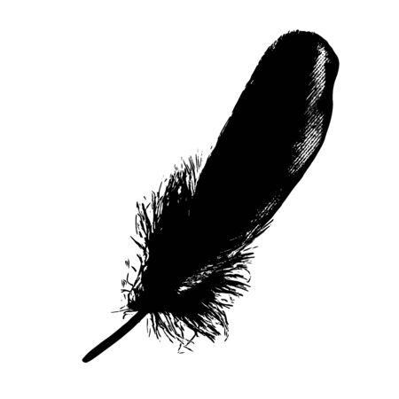 Feather Black Ink Graphic Boho Drawn Illustration Vector  イラスト・ベクター素材