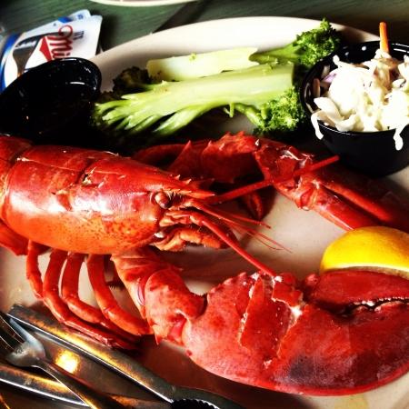 ale: arasota ale house lobster