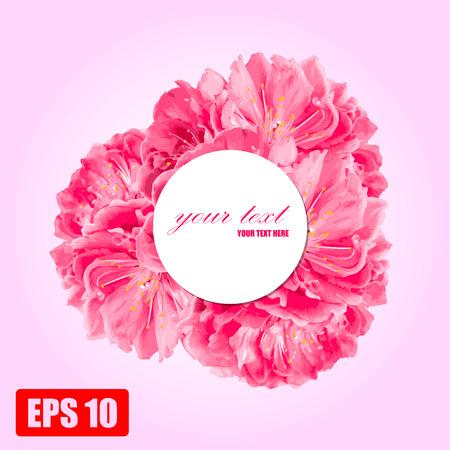 pink peach flower Vector