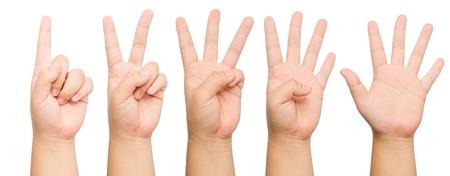 dedo indice: dedos mostrando 1 al 5