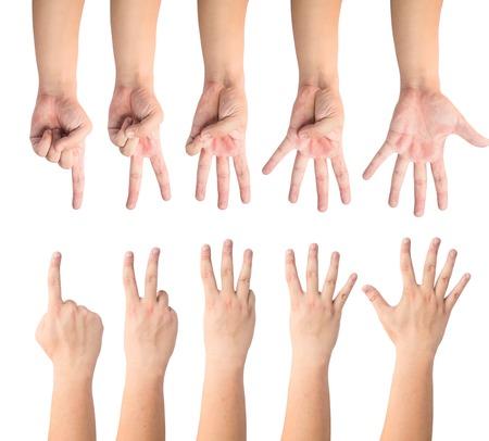 dedo indice: dedos mostrando 1 a 5 frente y la espalda Foto de archivo