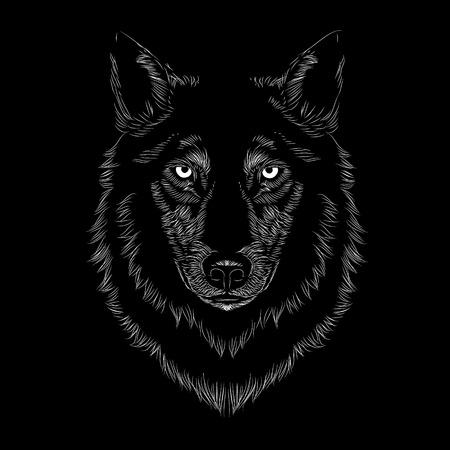Ilustración de cara de lobo de arte lineal sobre un fondo negro