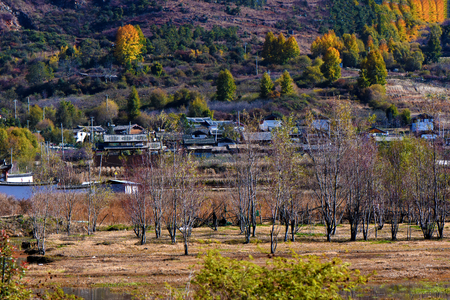 Autumn color in Lijiang
