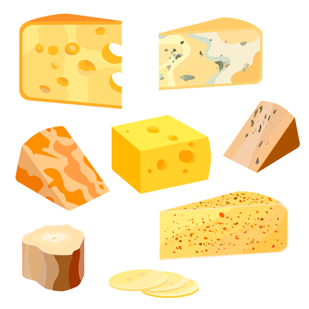 cheez: Cheese types. Modern flat style realistic vector illustration icons isolated on white background.