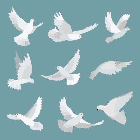 pentecost: Set white doves peace isolated on background. Vector bird illustration