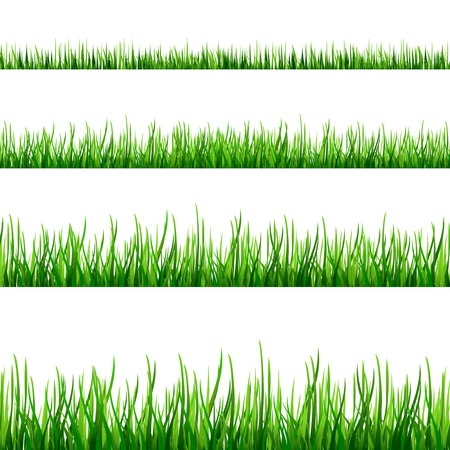 Grass seamless field pattern isolated on white