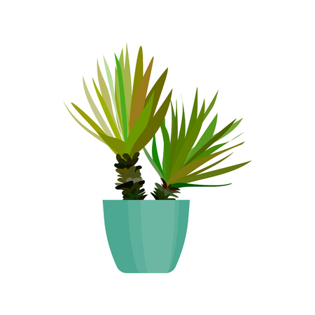 Green house plant in pot. Leaf cactus flat. Vector.