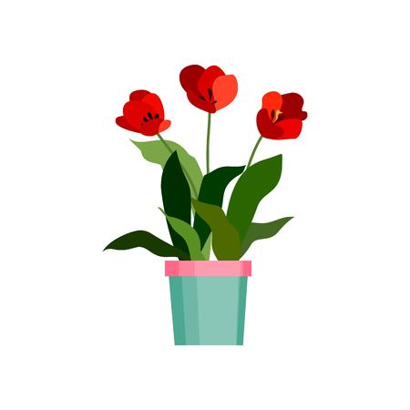 orange rose: Green house plant in pot. Leaf flower flat. Vector illustration Illustration