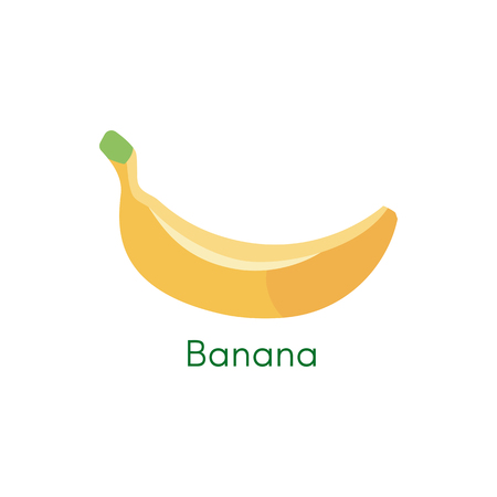 Vector banana. Bunches of fresh banana fruits isolated on white background, collection of vector illustration