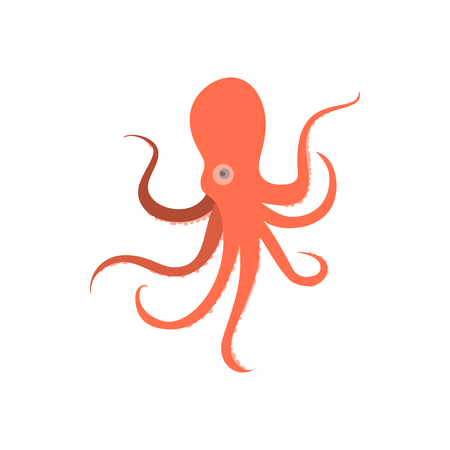 Cartoon octopus monster. Illustration of octopus baby. Octopus cartoon flat style. Cute octopus on white background. Cartoon octopus animal monstrous underwater. Tropical sea life animal octopus sign. Graphic illustration