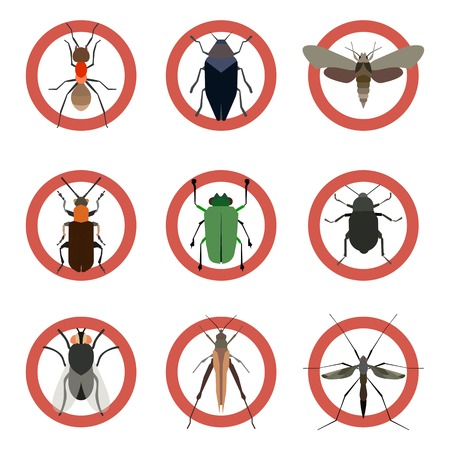Pest insects control icons. Collection danger insect. Graphic illustration Stock Photo