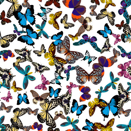 Big collection of colorful seamless butterflies. Butterflies isolated on white. Graphic illustration Stock Photo